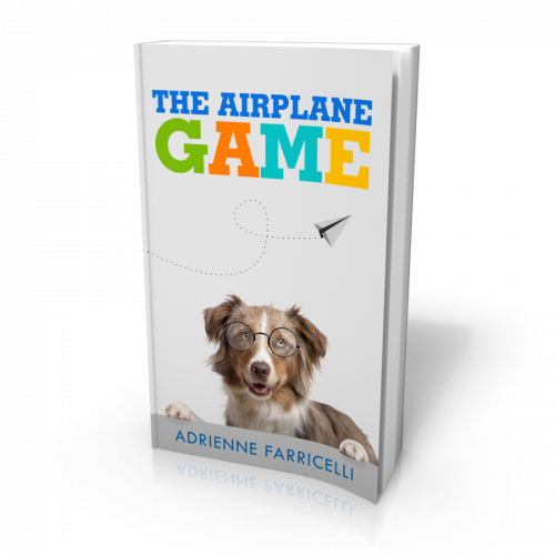 The-Airplane-Game-3D